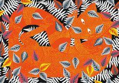 The fox and the star orange fox