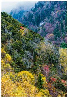 Sichuan Jiuzhaigou scenery!