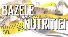 Video despre Bazele Nutritie
