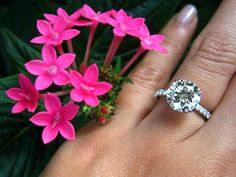 Engagement ring with round diamond and micro pave solitaire by Leon Mege