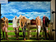 i love the country ,pinned by Ton van der Veer
