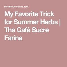My Favorite Trick for Summer Herbs   The Café Sucre Farine