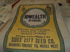 Iowealth Hybrid Sioux City Seed Co. Sioux City, Iowa
