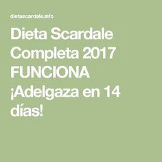 Dieta Scardale Completa 2017 FUNCIONA ¡Adelgaza en 14 días!