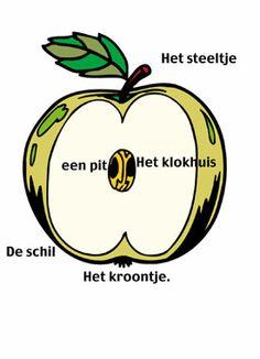 De appel uit het kleuterwoordenboek.