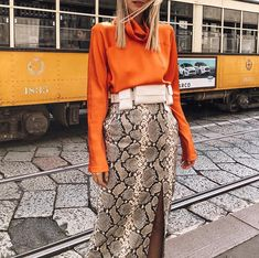 Be ready to see stylish snake print outfits at streets because it became a very trend print this season. Animal Print Outfits, Animal Print Skirt, Animal Print Fashion, Printed Skirt Outfit, Skirt Outfits, Printed Skirts, Fashion Week, Look Fashion, Fashion Outfits