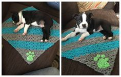 Puppy Blanket - Stit