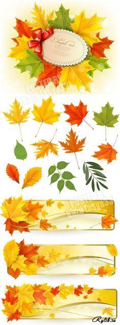 Осенние листья и баннеры вектор. Autumn leaves and banners
