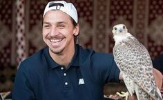 #tb Zlatan in Qatar, during the PSG Winter Tour 2013, watching a high flight falconry demonstration, and holding a falcon. ❤️