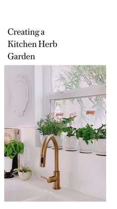 Creating a Kitchen Herb Garden: An immersive guide by sfgirlbybay / victoria smith Herb Garden In Kitchen, Kitchen Herbs, Porch Decorating, Interior Decorating, Interior Design, Window Styles, Easy Garden, Garden Planters, Garden Planning