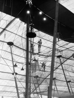 Wall art over end table  Men and Women Circus Performers on Flying Trapeze, Ringling Brothers Circus Photographic Print