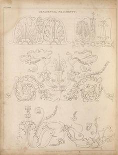 Ornamental fragments