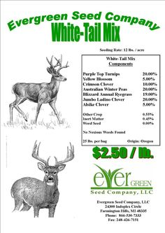 The Dirty Gardener 25 Pounds White Tail Deer Food Plot Seed Mixture Bow Hunting Deer, Quail Hunting, Archery Hunting, Deer Camp, Crossbow Hunting, Food Plots For Deer, Turkey Hunting Season, Weed Seeds, White Tail