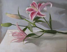 Lily Stem by Sarah Sedwick
