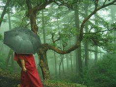 Dharamsala, Himachal Pradesh, India Monsoon is ALMOST OVER!