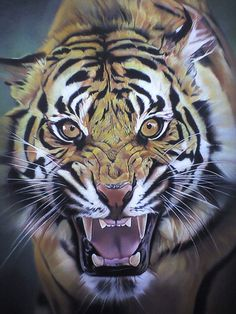 DeviantArt is the world's largest online social community for artists and art enthusiasts, allowing people to connect through the creation and sharing of art. Tiger Artwork, Tiger Painting, Big Cats Art, Cat Art, Tatoo Tiger, Regard Animal, Animals And Pets, Cute Animals, Lion Photography