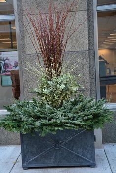 winter-container-arrangement.jpg