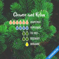 Cleanse and Relax - Essential Oil Diffuser Blend