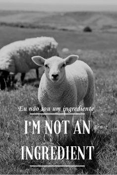 #vegan #veggie #veganlife #veganstyle #nature #animals #crueltyfree #love # vegano #vidavegana #estilovegano #natureza #animais #amor