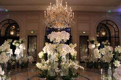 White arrangement