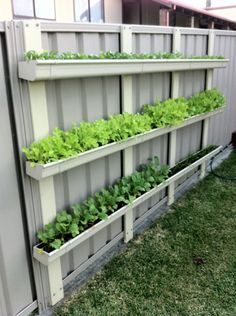 Gutter Gardens – Sustainably Sustainably DIY Garden Yard Art When growing your own lawn yard art, re Gutter Garden, Veg Garden, Vegetable Garden Design, Verticle Garden, Vertical Garden Plants, Vertical Planter, Backyard Vegetable Gardens, Fence Garden, Vertical Herb Gardens