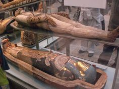 25 Truly Interesting Facts About the Ancient Egyptian Queen Cleopatra - vintagetopia Ancient Egyptian Artifacts, Ancient Artefacts, Ancient Egypt History, Ancient Civilizations, Egypt Mummy, Egyptian Queen, Egyptian Goddess, Egyptian Mummies, Old Egypt
