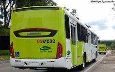 SÉRGIO JOSÉ- ÔNIBUS ALAGOAS: Manaus Recebe 30 ônibus Novos.