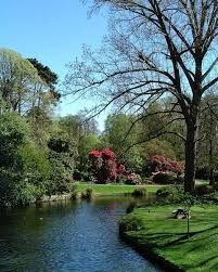 Image result for Christchurch botanical gardens