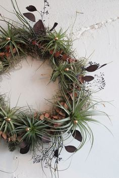 holiday wreath // air plant tillandsia // by by peacocktaco, $128.00