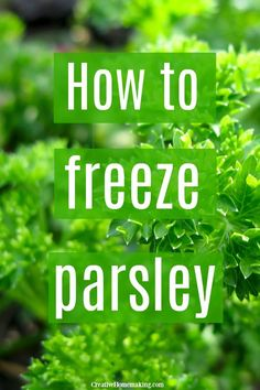 methods to freeze parsley from your garden, including freezing it in olive oil and how to make parsley logs to freeze.Several methods to freeze parsley from your garden, including freezing it in olive oil and how to make parsley logs to freeze. Freezing Fresh Herbs, How To Freeze Herbs, Freezing Vegetables, Veggies, Freezer Cooking, Freezer Meals, Basic Cooking, Parsley Recipes, Gourmet