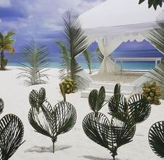 Kuredu hearts of palm Love Heart, Maldives, Origami, Palm, Hearts, The Maldives, Heart Of Love, Origami Art, Heart