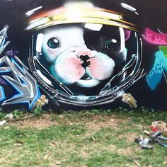 Batpig & Me Tumble It • in progress. Graffiti Murals, Halloween, Street Art, Photos, Christian, Puppies, French Bulldogs, Cute, Baby