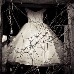 Lori Vrba Photography - Safekeeping