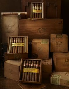 BEHIKE - The World's Most Expensive Cigar   World's Most Expensive Cigar - xxDxx
