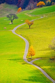Winding road through the countryside in Germany Beautiful Roads, Beautiful Landscapes, Beautiful World, Beautiful Places, Places Around The World, Around The Worlds, Famous Castles, Winding Road, Places To See