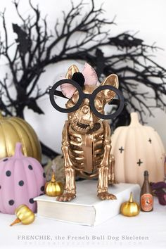 Learn how to make a dog skeleton into the most adorable Frenchie, the French Bull Dog Skeleton this Fall season!  He's sure to warm your heart and will keep your home safe when the trick or treaters coming knocking this Halloween. Delineate Your Dwelling #doghalloweenskeleton #dogskeleton #frenchbulldogskeleton