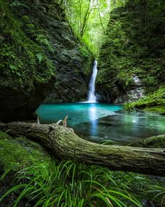 Just Breathe, Beauty Photos, Nymph, Amazing Nature, Serenity, Waterfall, Beautiful Pictures, Paths, Scene