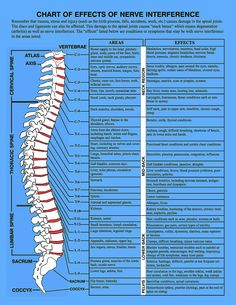Bennett Chiropractic and Wellness Center Tens Unit Placement, Cervical Spinal Stenosis, Sciatic Pain, Sciatica, Health Chart, Spine Health, Human Anatomy And Physiology, Body Anatomy, Chiropractic Care