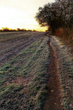 Mark Ruti - Google+   titled _ 'Frosty Morning'