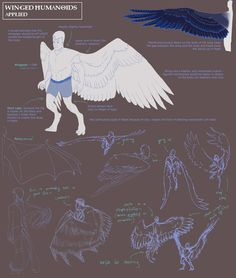 ---///Concept Art Tutorials///--- We have more tutorials and stuff Drawing Skills, Drawing Techniques, Drawing Reference, Drawing Sketches, Art Drawings, Character Design References, Character Art, Wing Anatomy, Human Wings