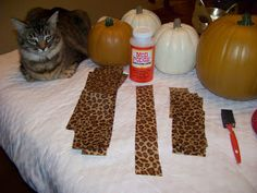 I've gotten so many requests for this super easy Fall project that it was high time to do a tutorial. Enjoy! Supplies needed: craft pum...