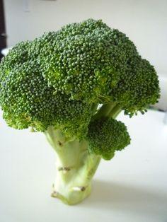 長持ちするブロッコリーの保存方法。 Cooking Tips, Cooking Recipes, Food Hacks, Food Tips, Food Storage, Preserves, Broccoli, Frozen, Food And Drink
