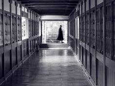 永平寺 Eiheiji by Jason Sims fukui Soto zen buddhism
