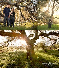 sunset engagement, oak tree, grass hills, woods, forest, park, coto de caza, Engagement Photography, Gilmore Studios, Kiss, Love, Engagement, Couple