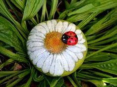 Image result for piedras pintadas formando una flor
