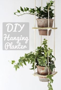DIY hanging planter by Teri from The Lovely Drawer, perfect for botanical lovers and to show off your favourite summer plants.