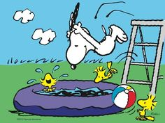 Snoopy Pool Party