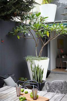 amenagement-terrasse-exterieur-mobiliers-d-extérieur-moderne-pour-le-jardin-moderne. Back Gardens, Small Gardens, Outdoor Gardens, City Gardens, Outdoor Pots, Terrace Garden, Garden Pots, Garden Ideas, Garden Troughs