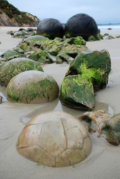 Moeraki Boulders  The Moeraki Boulders are unusually large and spherical boulders lying along a stretch of Koekohe Beach New Zealand between Moeraki and Hampden. They occur scattered either as isolated or clusters of boulders within a stretch of beach where they have been protected in a scientific reserve.    the boulders consist of mud, fine silt and clay, cemented by calcite.