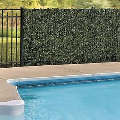 Faux Ivy Privacy Screen by Improvements - 3' x 10' at HSN.com